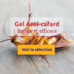Gel anti-cafards